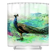 Peacock Water Digital Painting  Shower Curtain