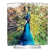 Peacock Watercolor Painting Shower Curtain