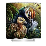 Peahen And Chick Shower Curtain