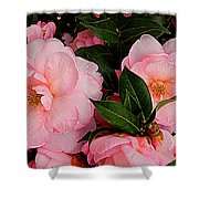 Peak Of Pink Perfection Shower Curtain