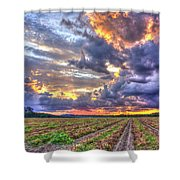 Peanuts, Clouds And Sun Shower Curtain