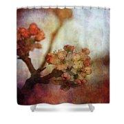 Pear Blossom Sunset 8930 Idp_2 Shower Curtain