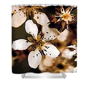 Pear Tree Blossoms Shower Curtain