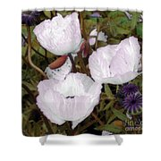 Pearlblossoms Shower Curtain