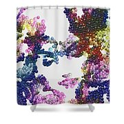 Pearls And Everything Shower Curtain