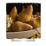 Pears And Hydrangea Still Life  Shower Curtain