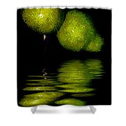 Pears And Its Reflection Shower Curtain