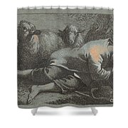 Peasant Boy Asleep Near Two Sheep Shower Curtain
