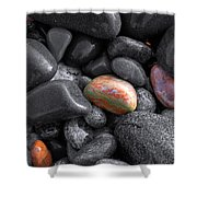 Pebble Jewels   Shower Curtain