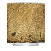 Pebbles And Texture On A Crosscut Log Shower Curtain