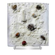 Pebbles In Snow Shower Curtain by Augusta Stylianou