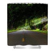 Pecan Alley Rays - Arkansas - Landscape Shower Curtain