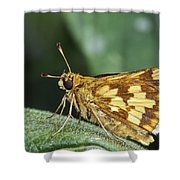 Peck's Skipper Shower Curtain