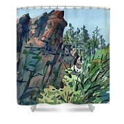 Pecos Canyon Shower Curtain