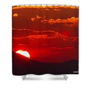 Peek-a-boo Sun Shower Curtain