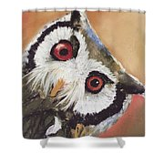 Peekaboo Owl Shower Curtain