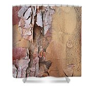 Peeling Bark Shower Curtain