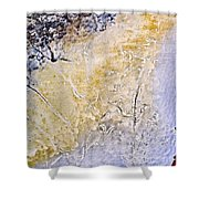 Peeling Paint And Pastels Shower Curtain