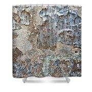 Peeling Wall. Shower Curtain