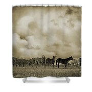 Peeples Valley Horses In Sepia Shower Curtain