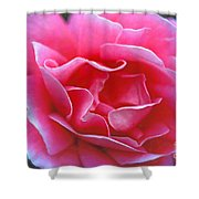 Peggy Lee Rose Bridal Pink Shower Curtain
