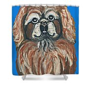 Peke For You Shower Curtain
