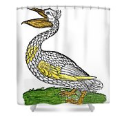 Pelican, 1560 Shower Curtain