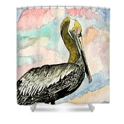 Pelican 2  Shower Curtain