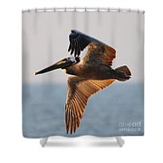 Pelican 3534 Shower Curtain