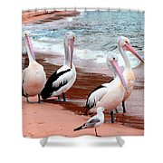 Pelican 5.0 Pearl Beach Shower Curtain
