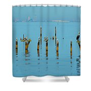 Pelican And Mobile Shower Curtain