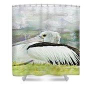 Pelican Art 0006 Shower Curtain