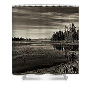 Pelican Bay Morning - Yellowstone Shower Curtain