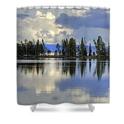Pelican Bay Morning Shower Curtain