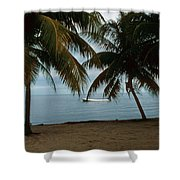 Pelican Beach Belize Shower Curtain