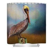 Pelican Blues Shower Curtain