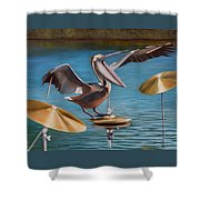 Pelican Crash Shower Curtain