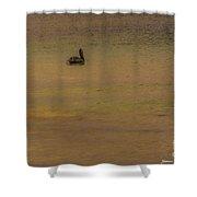 Pelican Drift Shower Curtain