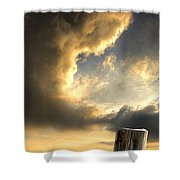 Pelican Evening Shower Curtain