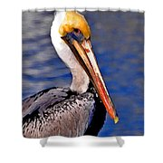 Pelican Head Shot Shower Curtain