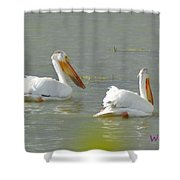 Pelican In Colorado Shower Curtain