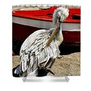 Pelican In Mykonos II Shower Curtain