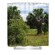 Pelican Island Nwr In Florida Shower Curtain