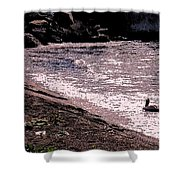 Pelican Lunch Shower Curtain