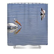 Pelican Mates Shower Curtain