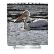 Pelican No 7 4937 Shower Curtain