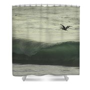 Pelican Odyssey Shower Curtain