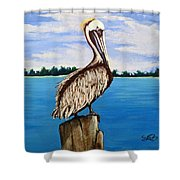 Pelican On Post 2 Shower Curtain