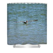 Pelican On The Move Shower Curtain