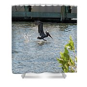 Pelican On The Waves Shower Curtain